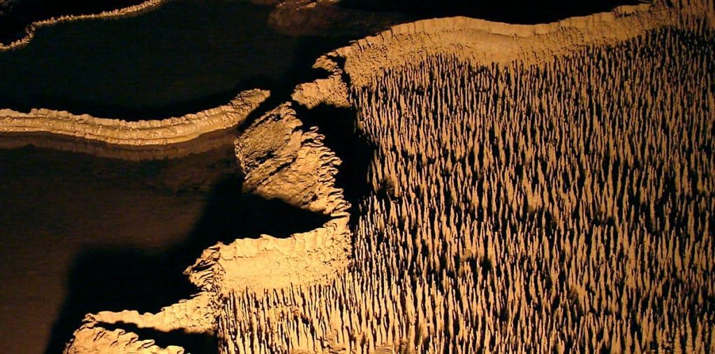 Grottes de Trabuc - Gite Roulotte Entre Vignes et Oliviers - Gard - Cévennes