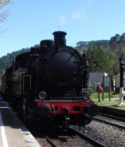 Petit Train des Cevennes - A voir - Gite Roulotte Entre Vignes et Oliviers - Cevennes - Gard