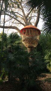 bambouseraie - tourisme gite roulotte entre vignes et oliviers hebergement boheme nature - cevennes