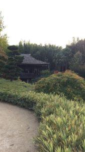 pagode vallee du dragon bambouseraie - gite roulotte entre vignes et oliviers - cevennes - gard
