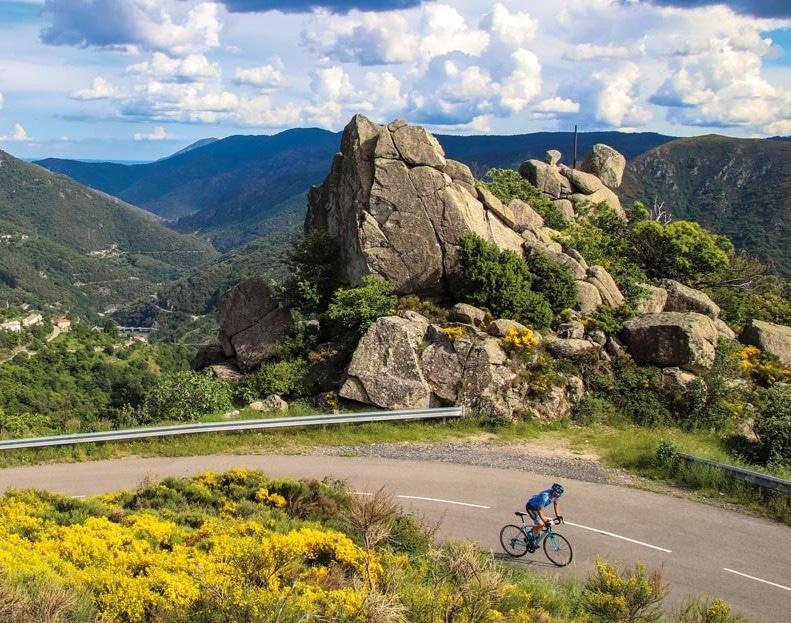 cycliste cevennes - gite roulotte entre vignes et oliviers - cevennes - gard