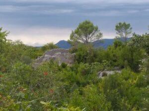 Sauve Mer des Rochers - Gite roulotte Entre vignes et oliviers - Cevennes - Gard